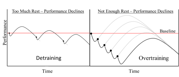 General Adaptation Syndrome Model, GAS, Detraining, Overtraining, performance,
